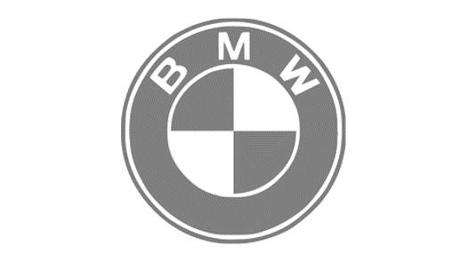 BMW logo grey